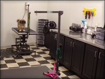 pet-grooming-richmond-hill-ga-31324
