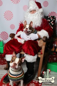 pet-santa-pictures-richmond-hill-ga-31324